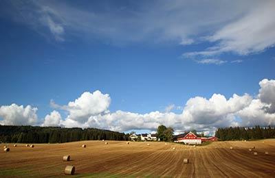 Trajekty do Skandinávie